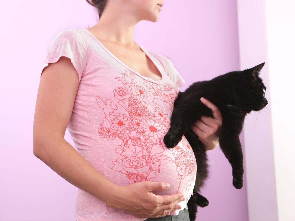 Признаки хронического токсоплазмоза при беременности и методика лечения