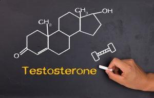 Тестостерон – мужской половой гормон, который важен для репродуктивного развития