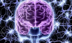 Основные симптомы и опасность спазма сосудов головного мозга