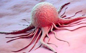 Повышенный общий белок в крови может быть признаком ракового заболевания